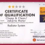 Shell - Radiator